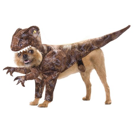 California Costumes PET20109XS Animal Planet Raptor Pet Costume, X-Small