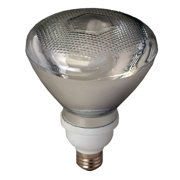 Royal Pacific 23W Gray (2700K) Fluorescent Light Bulb (Pack of 12)