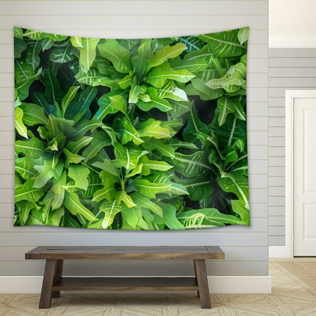 wall26 - Green Tropical Leaf Pattern Stock, Dominican Republic - Fabric Wall Tapestry Home Decor - 51x60 inches