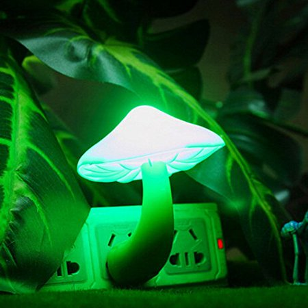 Side Wall (Beauty Night Light Lava Lamps LED Small Portable Mushroom Lamp Bedside Wall Color:Green )