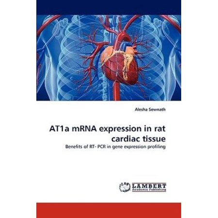 At1a Mrna Expression In Rat Cardiac Tissue