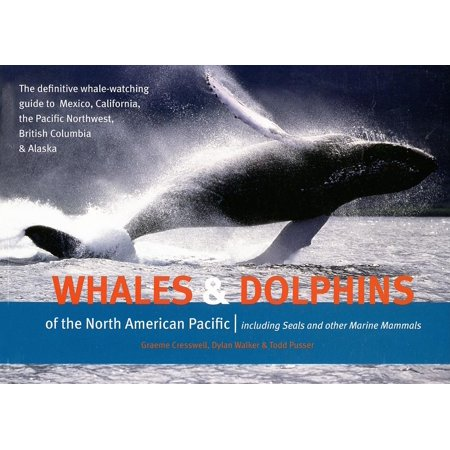 Whales & Dolphins of the North American Pacific: Including Seals and Other Marine Mammals (Paperback)
