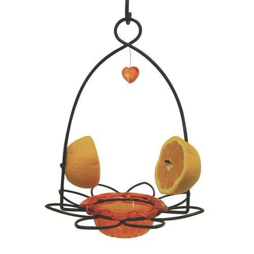 Birds Choice Flower Oriole Birdfeeder by Birds Choice