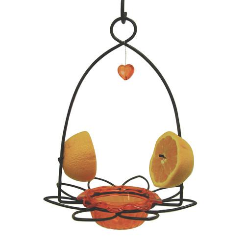 Birds Choice Oriole Decorative Bird Feeder
