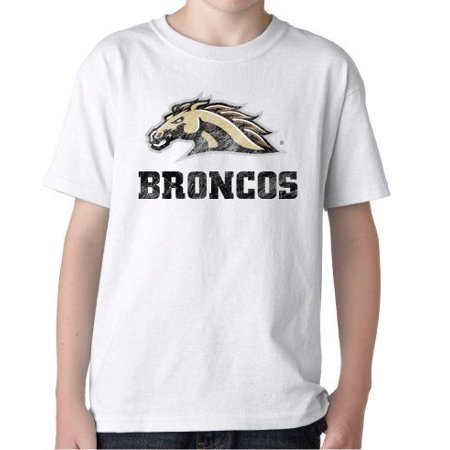 Western Michigan Broncos Tailgate (J2 Sport Western Michigan Broncos NCAA Big Mascot Youth T-shirt )