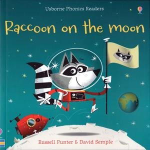 Raccoon And The Moon