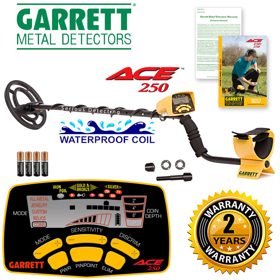 Ace 250 Metal Detector by