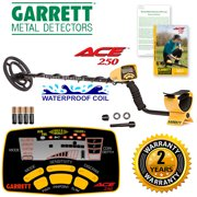 Best Cheap Metal Detectors - Ace 250 Metal Detector Review