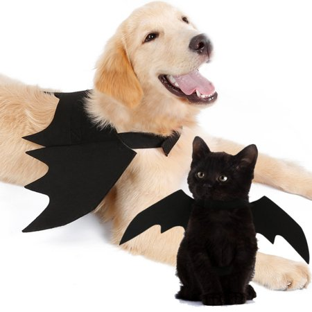 Xxs Puppy Halloween Costumes (Pet Halloween Cosplay Funny Costume for Dogs Cats Puppies Kittens Black Bat)
