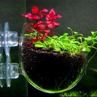 Mini Fish Tank Aquarium Aquatic Planting Cylinder Water Grass Breeding Plant Cultivation Basin Pot With Suction Cups
