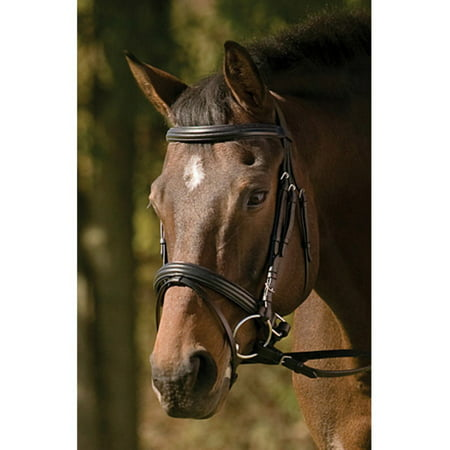 (Henri De Rivel Padded Raised Dressage Bridle with Jawband Crank and Web Reins)