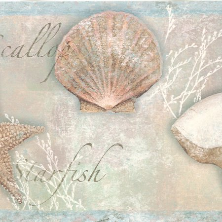 878060 Seashells Wallpaper Border (How Are Seashells Made)
