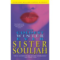 The Coldest Winter Ever : A Novel