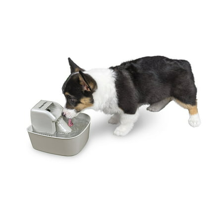 Premier Pet 50 oz. Pet Fountain – Automatic Water Fountain for Dogs and Cats (Ceramic Pet Fountain)