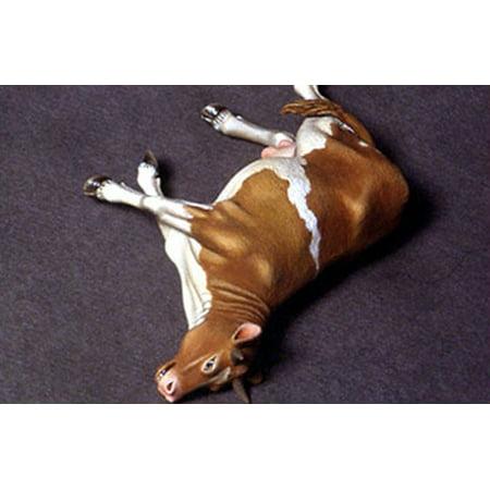 - Doug's Original 1:35 Dead Cow - Animal Resin Figure Kit #DO35A02