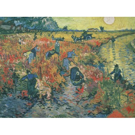 Red Vineyards at Arles, 1888 Post-Impressionist Country Sunset Painting Print Wall Art By Vincent van (Vincent Van Gogh Bedroom In Arles 1888)