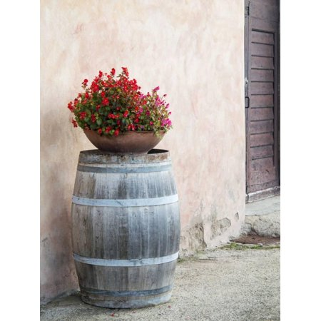 - Europe, Italy, Tuscany. Flower Pot on Old Wine Barrel at Winery Print Wall Art By Julie Eggers