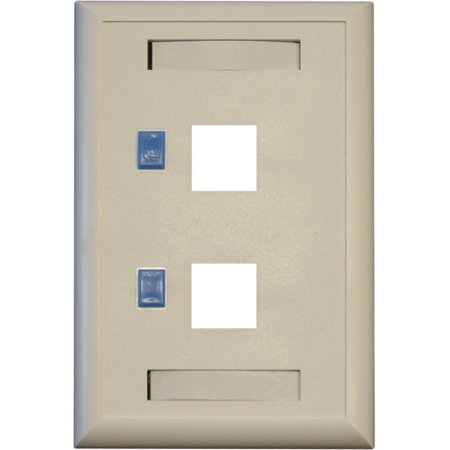 Tripp Lite Dual Outlet RJ45 Universal Keystone Face Plate / Wall Plate N042001WH