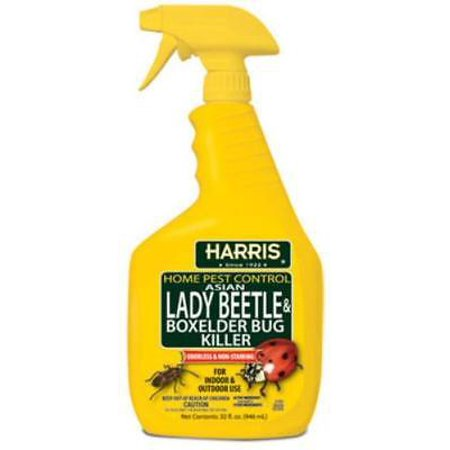 32 OZ Ready To Use Asian Lady Beetle & Box Elder Bug Killer Contains Only One