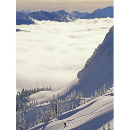 Skier Skiing Fresh Deep Powder in Backcountry Near Fernie, East Kootenays, British Columbia, Canada Print Wall Art By Henry