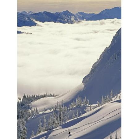 Skier Skiing Fresh Deep Powder in Backcountry Near Fernie, East Kootenays, British Columbia, Canada Print Wall Art By Henry Georgi