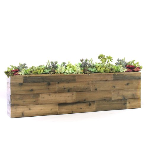 Gracie Oaks Reclaimed Wood Look Box Floor Succulent Plant In Planter