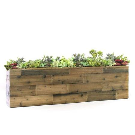 Gracie Oaks Reclaimed Wood Look Box Floor Succulent Plant In Planter