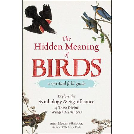 The Hidden Meaning of Birds--A Spiritual Field Guide -
