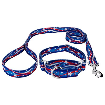Country Brook Design - Star Spangled Martingale Dog Collar and Leash