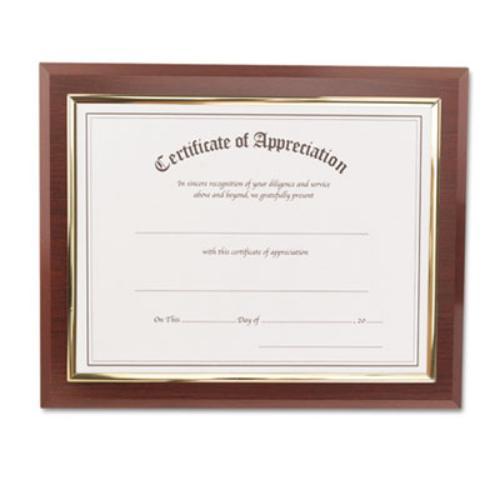 "Glolite Nu-dell Insertable Executive Award Plaques - 11"" X 8.50"" (18853m)"