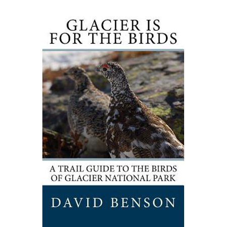 Glacier Is for the Birds : A Trail Guide to the Birds of Glacier National
