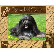 Giftworks Plus DBA0017 Bearded Collie, Alder Wood Frame, 5 x 7 In