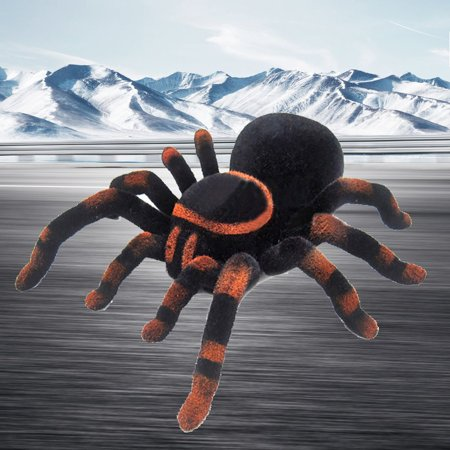 Children Simulation Tarantula Remote Control Spider Tidy Scary Toy - image 4 of 6