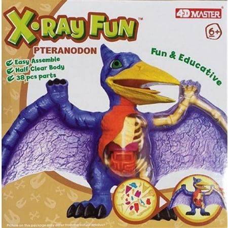 X-Ray Fun Pteranodon (X-ray Rubber)