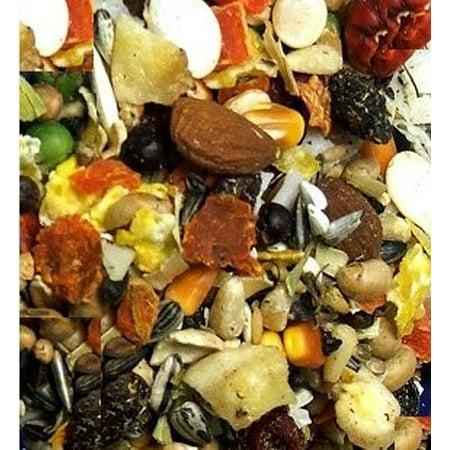 Higgins Mayan Harvest Tikal Blend Large Hookbill Bird Food, 3 Lb