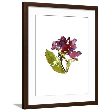 - Marsala Rose Framed Print Wall Art By Cayena Blanca