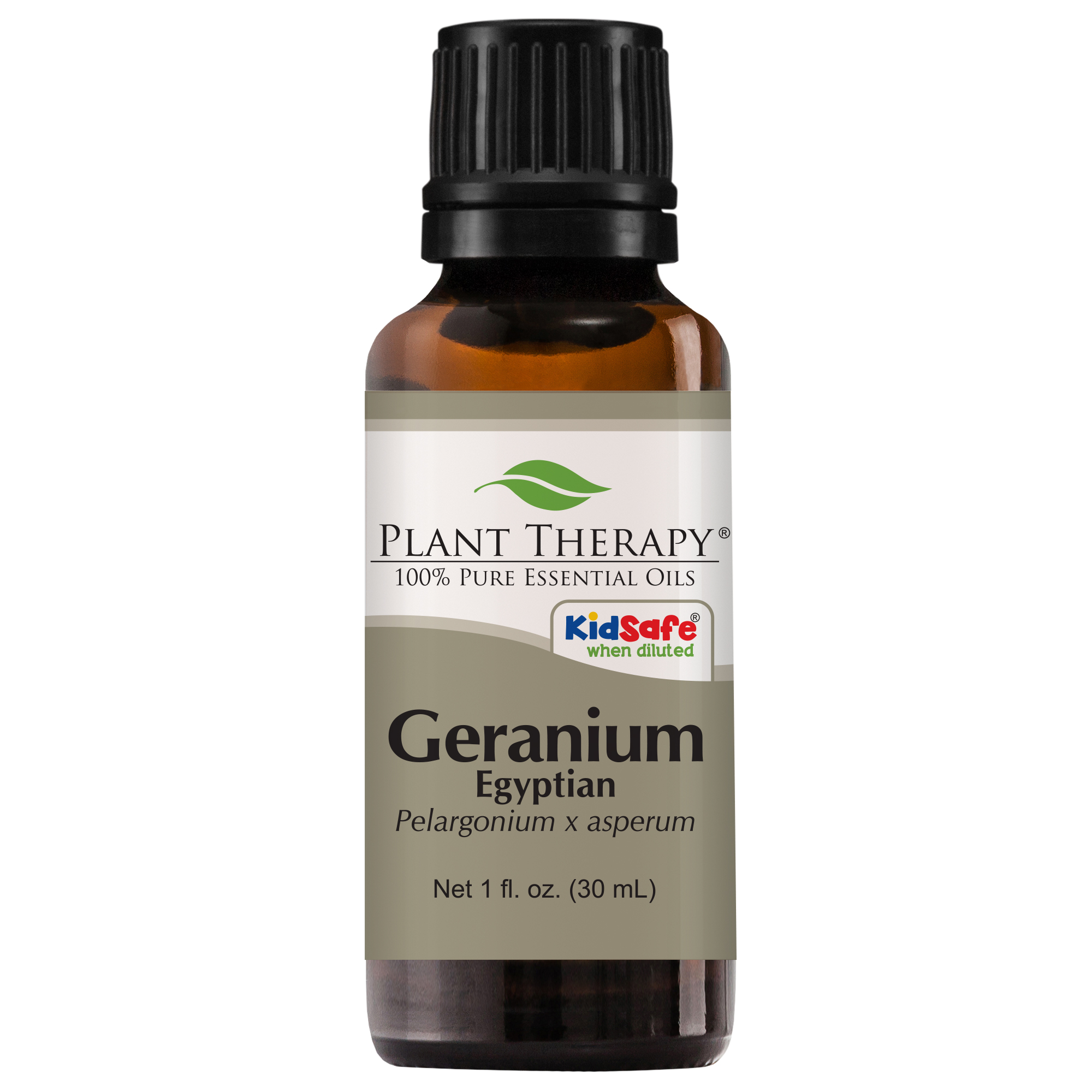 Plant Therapy Geranium Egyptian Essential Oil | 100% Pure, Undiluted, Natural Aromatherapy, Therapeutic Grade | 30 mL
