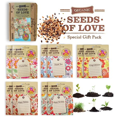 Personalized greeting cards with organic non gmo flower seeds for personalized greeting cards with organic non gmo flower seeds for planting perfect card for christmas m4hsunfo