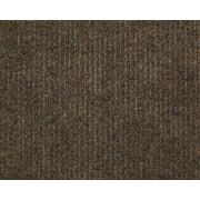 Brown Economy Indoor Outdoor Custom Cut Carpet Patio Pool Area