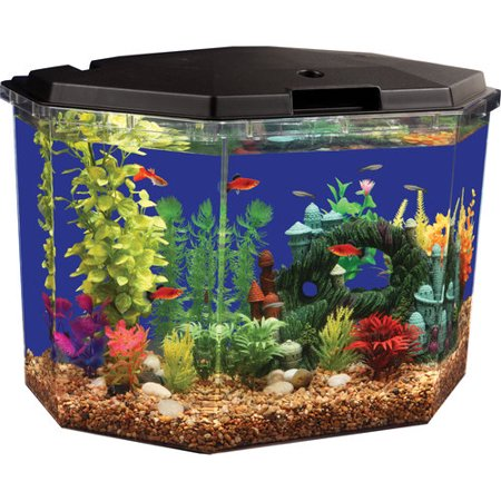 Aqua culture 6 5 gal semi hex aquarium kit for Walmart fish supplies