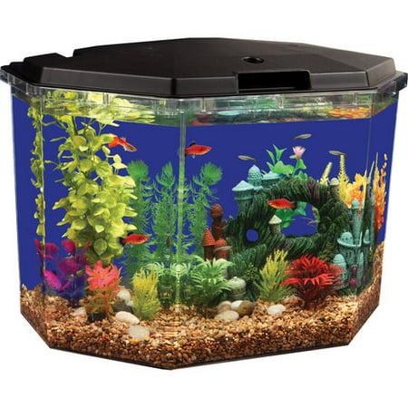 Aqua culture 6 5 gal semi hex aquarium kit for 30 gallon fish tank walmart