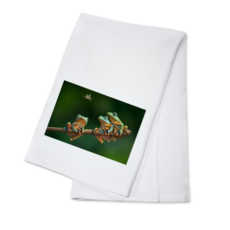 Tree Frogs watching Dragonfly - Lantern Press Photography (100% Cotton Kitchen Towel) - Dragonfly Boutique