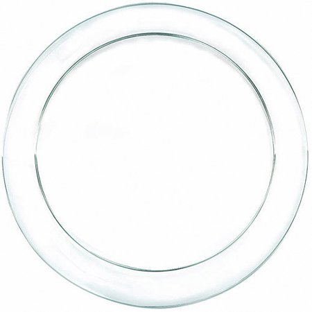 Amscan Clear Plastic Dinner Plates (Pack of 24)