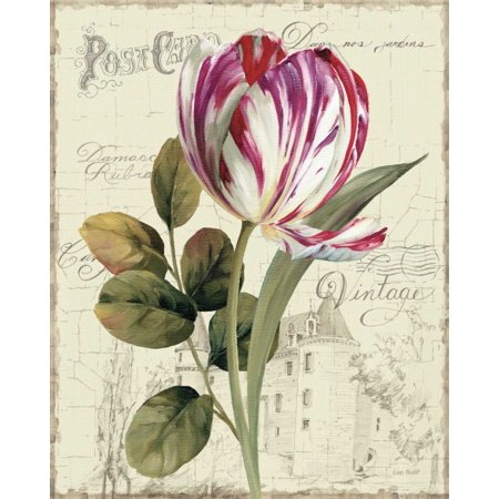 - Garden View II - Tulip Poster Print by Lisa Audit