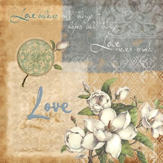 Love Poster Print by Janet Stever (19 x 19)