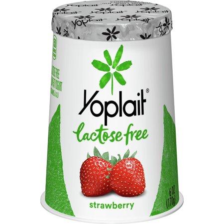 Yoplait Lactose Free Yogurt Strawberry, 6 oz Cup ()