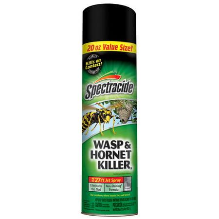 Spectracide Wasp & Hornet Killer, 20 oz, 27 Ft Jet Spray