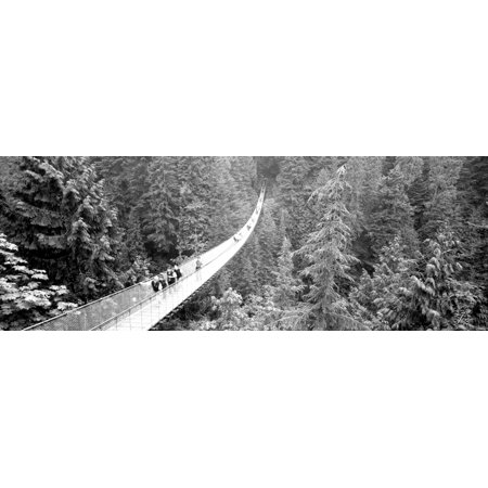 Capilano Bridge Suspended Walk Vancouver British Columbia Canada Stretched Canvas - Panoramic Images (13 x 36) 13 Sonneman Suspended Glass