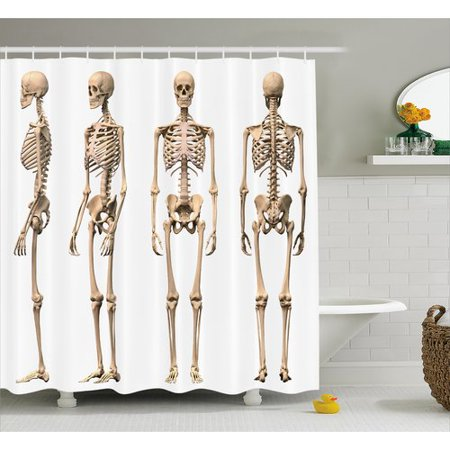 Ambesonne Human Anatomy Man Male Skeleton Skull Different Perspectives Medical Humor Illustration Single Shower Curtain