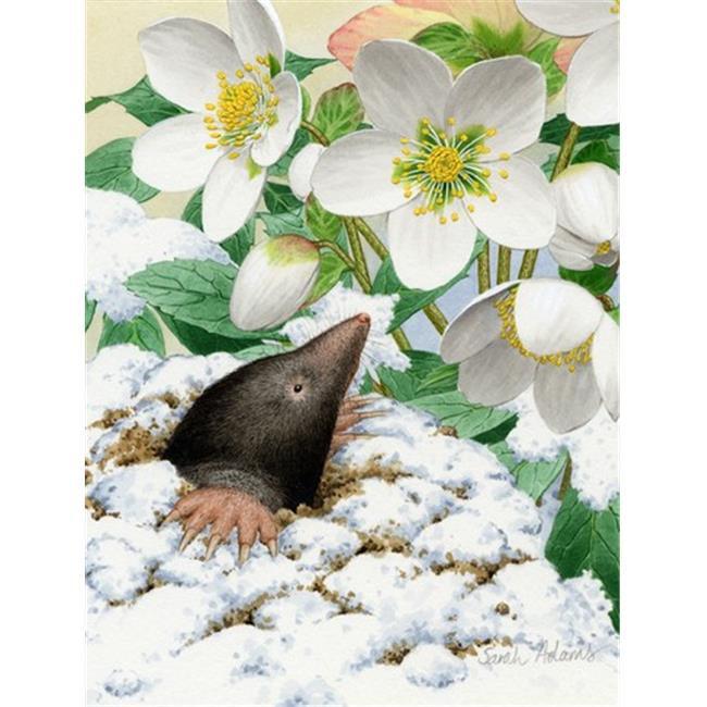 Carolines Treasures ASA2031GF Mole Flag Garden Size - image 1 of 1